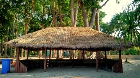 Radhanagar_beach (4)